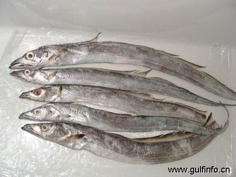 巴基斯坦鱼类出口增长