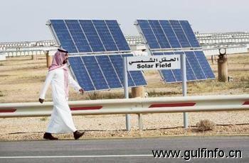 国际金融公司2013年向中东可再生能源项目投资3亿美元