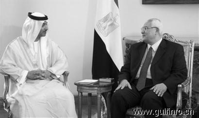 阿联酋向埃及援助49亿美元