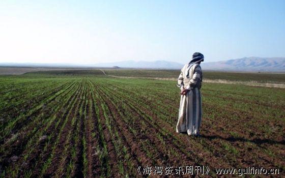 为发展农业生产,伊拉克大力开展土地改良运动