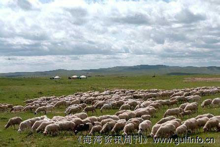 苏丹开始出口价值10亿美元的牲畜肉