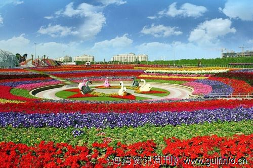 世界最大花园:迪拜奇迹花园耗费4500万株鲜花