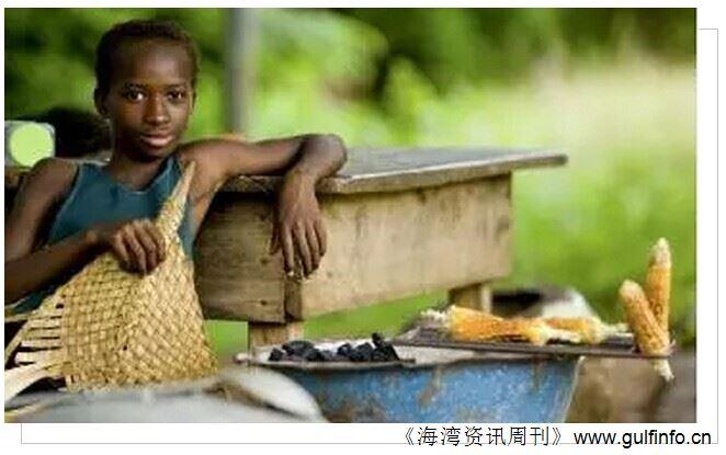 非洲愿景:成为世界的粮仓