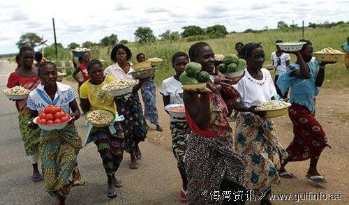 赞比亚庆祝非洲自由日 关注<font color=#ff0000>女</font><font color=#ff0000>性</font>赋权