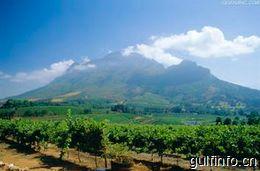 中资企业助推南非经济社会发展