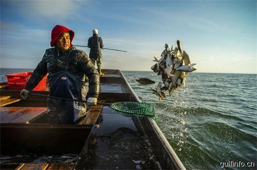 阿曼得天独厚的渔业资源,一份来自上天的神奇馈赠!