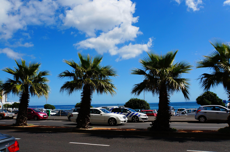 """""""彩虹之国""""南非力拓中国旅游市场,在九大城市设立签证中心!"""