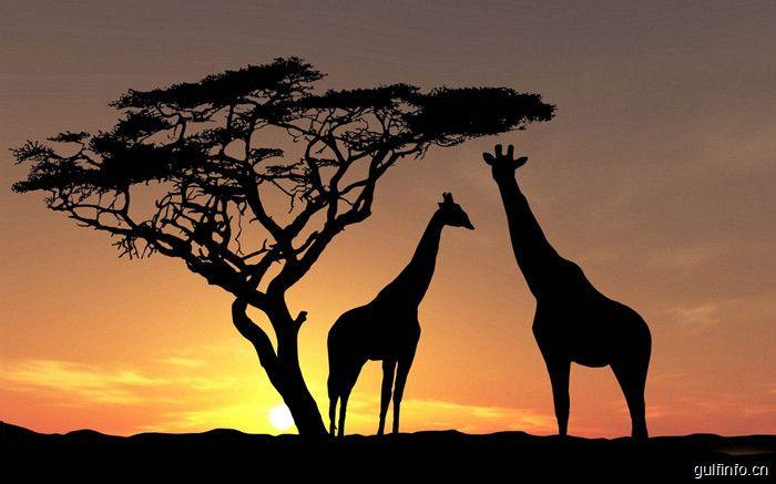 别样风景,真实非洲---带你走进10个小众的非洲景点