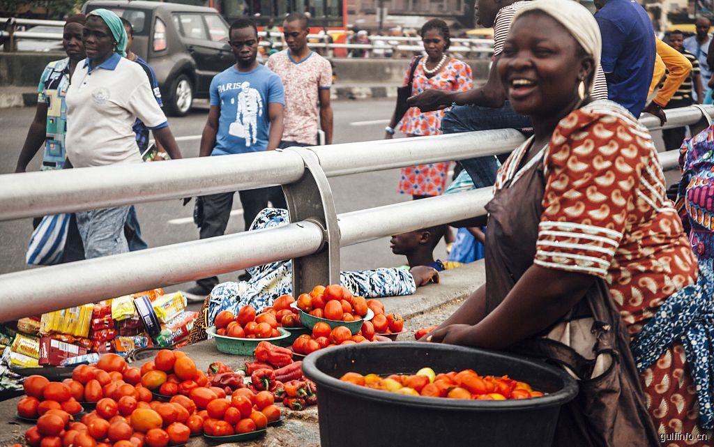 知道为什么西红柿对于尼日利亚无比重要吗?