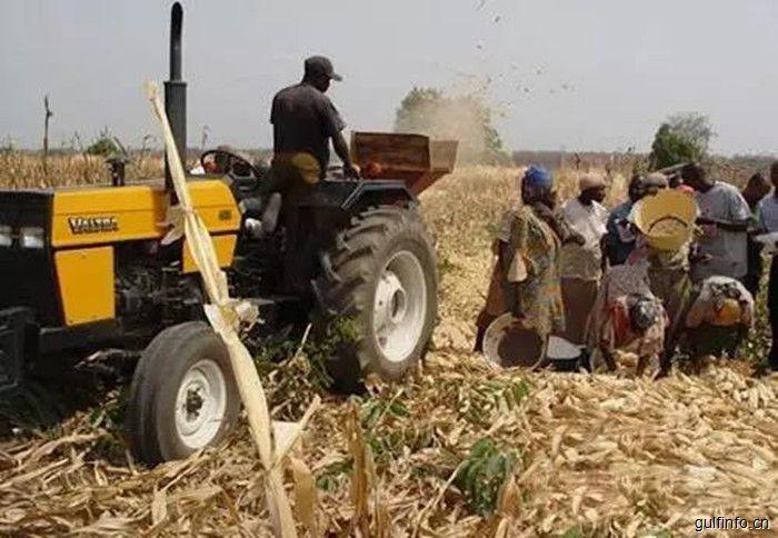 中国农机在非洲成刚需,市场潜力巨大!