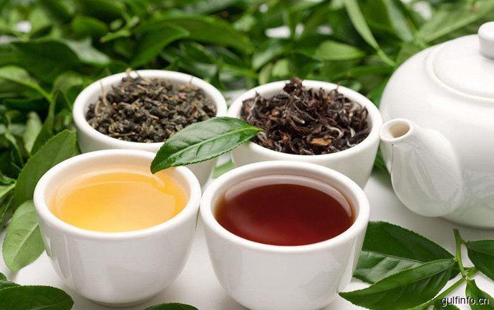 中企与摩洛哥签署1500万美元茶叶大单,摩洛哥成中国茶叶出口大国