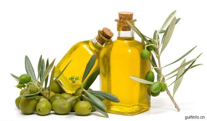 2017-2018年,值得关注和投资的摩洛哥橄榄产业