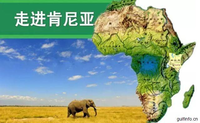 肯尼亚商品进口数据报告
