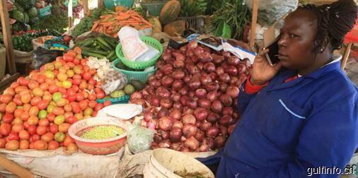 肯尼亚仍未走出高粮价困境,玉米仍赖进口