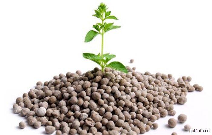 详解西非各国的化肥市场