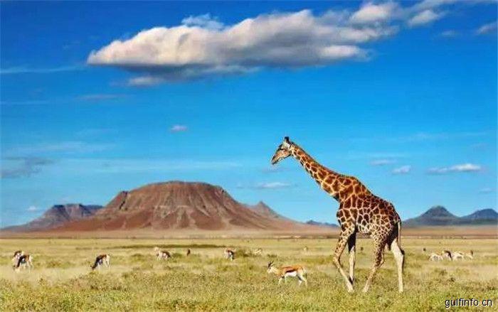 非洲13国最佳旅游时间新鲜出炉,拿走不谢!