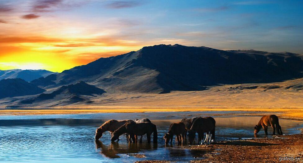 非洲旅游业竞争力分析