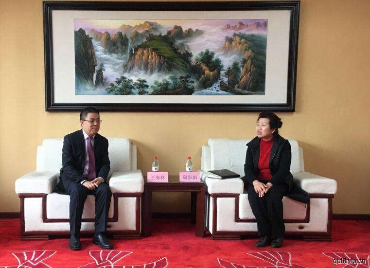 MIE集团总裁王海林一行拜访湖北省贸促会、商务厅
