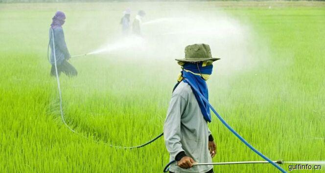 大量依赖进口的埃及农用化学品产业