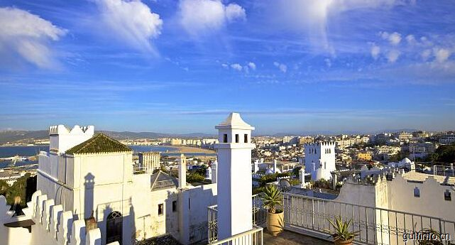 2017年摩洛哥企业对外投资主要领域为银行业