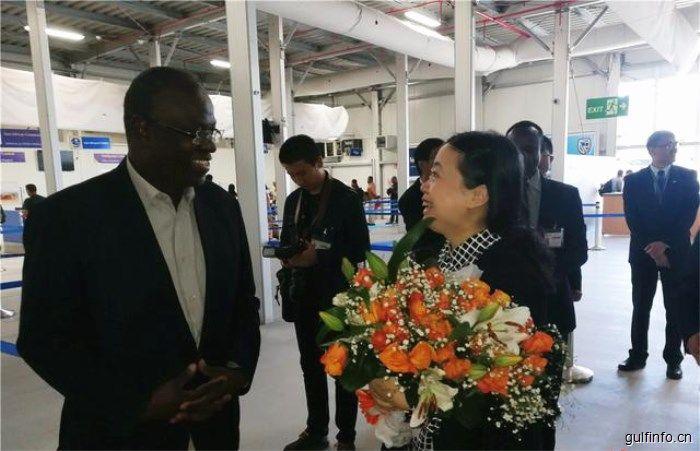 """中国新任驻肯大使:中非合作论坛北京峰会将为中非关系发展及""""南南合作""""做出重大贡献"""