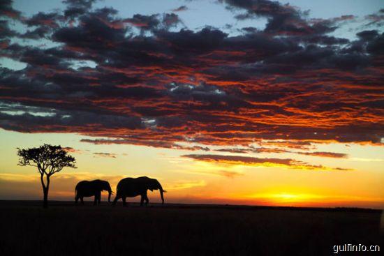 非洲旅游的四误解六禁忌