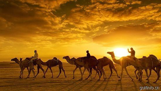 阿联酋签发10年签证 个人投资热潮或将再来!