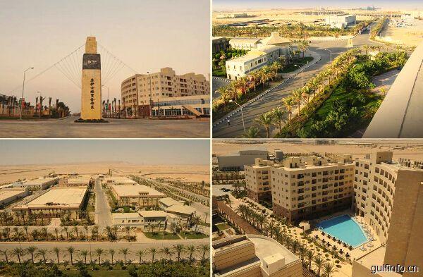 """埃及:苏伊士经济区是""""一带一路""""倡议建设的聚焦点,欢迎中国企业扩大投资"""