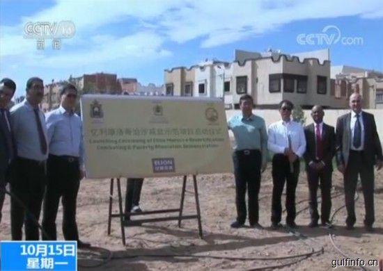 中国亿利集团计划与摩洛哥东部大区开展农业合作