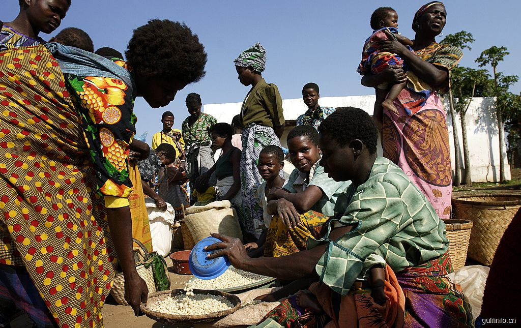 中非农业<font color=#ff0000>合</font><font color=#ff0000>作</font>走在希望的田野上