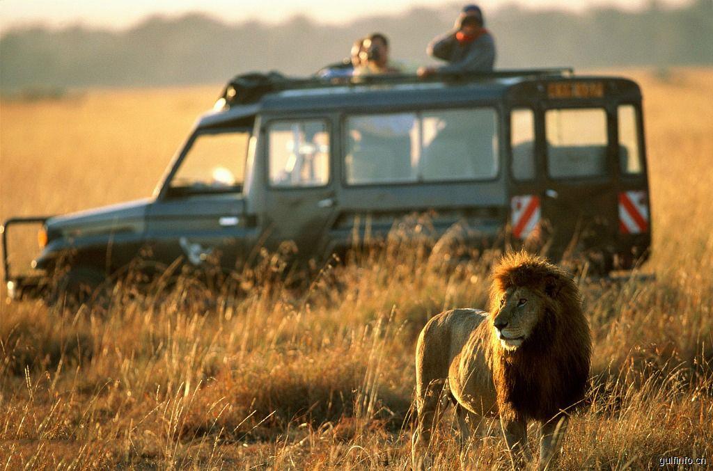 中国赴肯尼亚游客数量居国际游客第四位