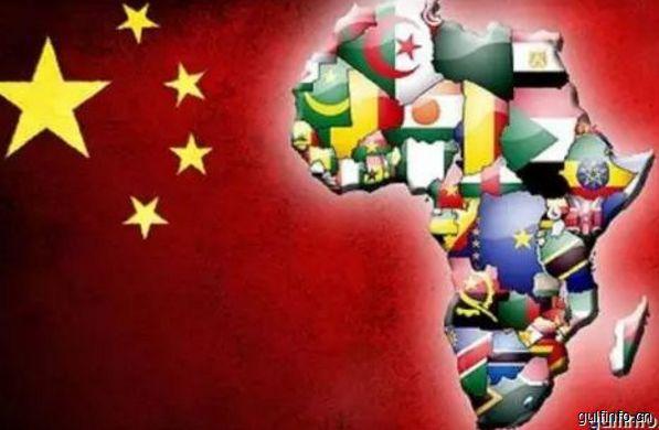 2018年1-11月我国与非洲贸易进<font color=#ff0000>出</font><font color=#ff0000>口</font>总额同比增长20.3%