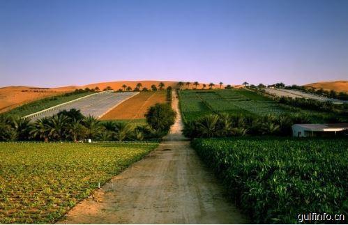 沙特支持发展有机农业