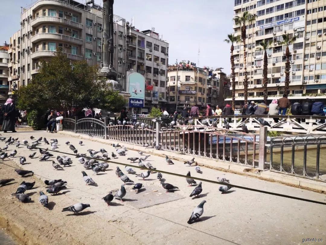 叙利亚重建商务考察暨61届大马士革国际博览会观/参展活动