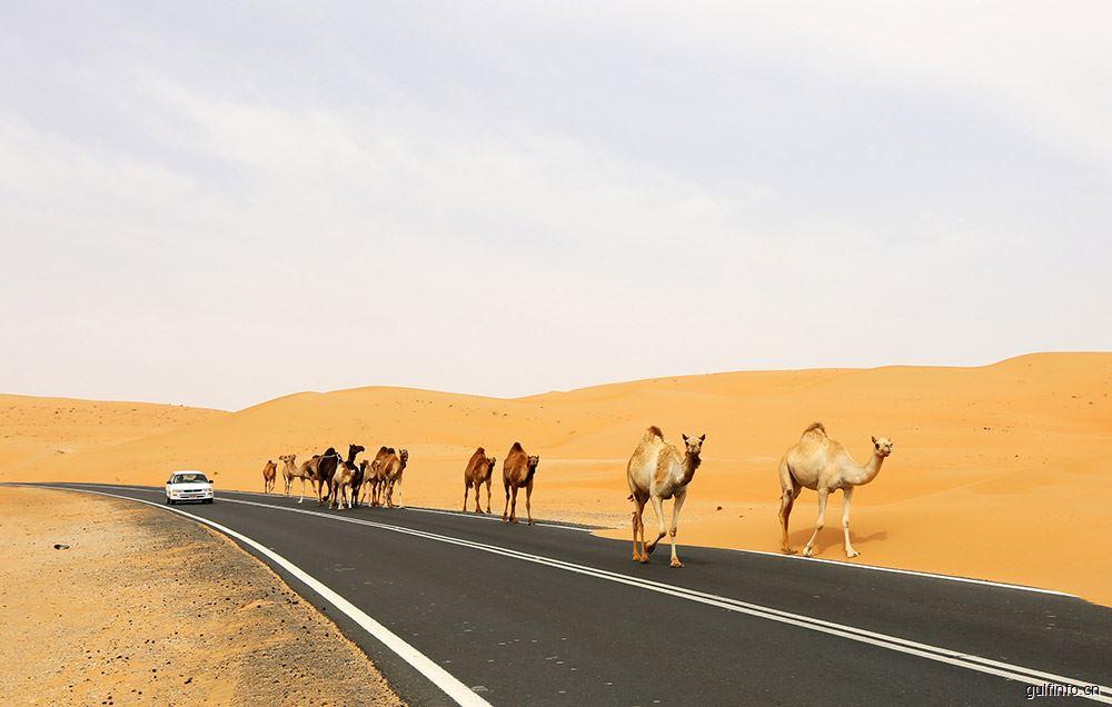 阿联酋成为中国全球出口路线图的中心环节