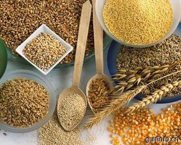 中国农产品出口沙特阿拉伯市场分析