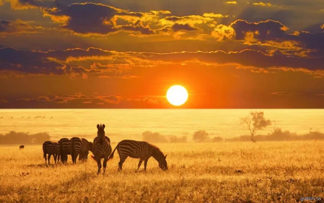 关于非洲市场的误解
