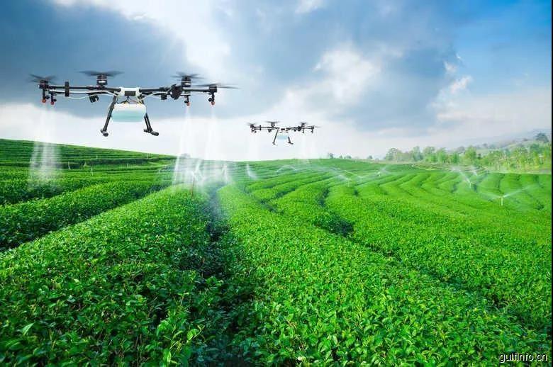 阿联酋将允许外国人拥有工业、农业和服务业的100%所有权