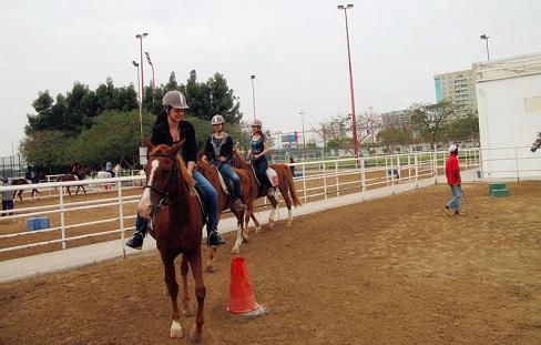 迪拜马术俱乐部骑马打猎