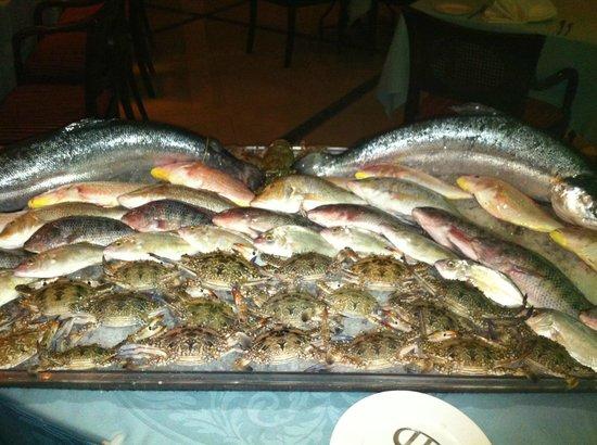 阿联酋鱼价上涨 部分<font color=#ff0000>餐</font><font color=#ff0000>厅</font>停止供应鱼类菜肴